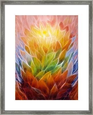 Metamorphosis Framed Print by Ann Croon
