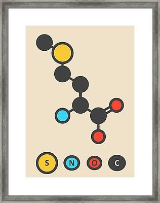 Methionine Amino Acid Molecule Framed Print by Molekuul