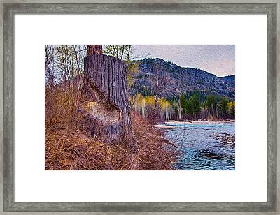 Methow Riverbank Framed Print by Omaste Witkowski