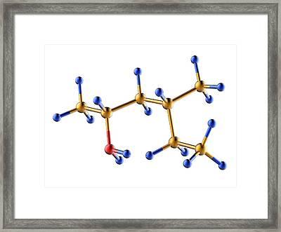 Methylhexanamine Molecule Framed Print by Alfred Pasieka