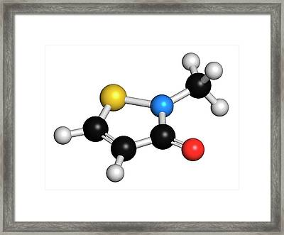 Methylisothiazolinone Preservative Framed Print by Molekuul