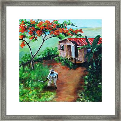 Mi Flamboyan Framed Print by Migdalia Bahamundi