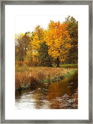 Michigan In The Fall Framed Print by Gary Richards