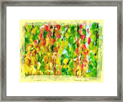 Micro Linear Apricot Leaves Framed Print by Will Borden