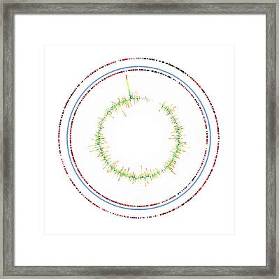 Microbial Response To Oil Framed Print by Lawrence Berkeley National Laboratory
