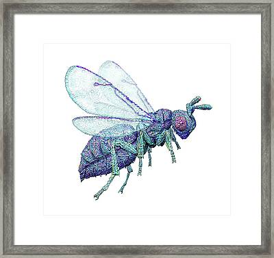 Microbial Wasp Framed Print by Nicolle R. Fuller
