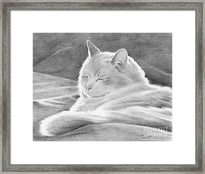 Mid-morning Meditation Framed Print by Suzanne Schaefer