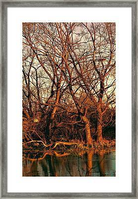 Midday Framed Print by Leif Sohlman