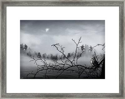 Midnight Beauty Framed Print by Lourry Legarde