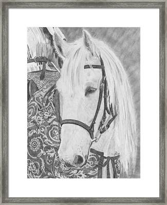 Midsummer Knight Majesty Framed Print by Gigi Dequanne