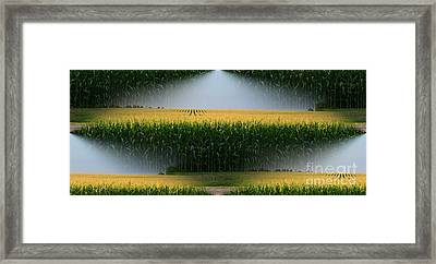 Midwest Gold Framed Print by Luther   Fine Art