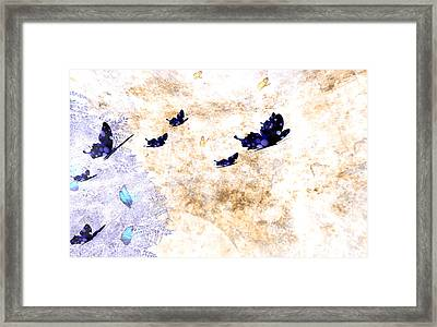 Migration Framed Print by Phil Vooz