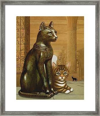 Mike The British Museum Kitten Framed Print by Frances Broomfield