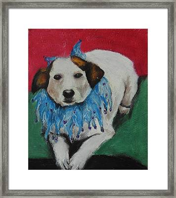 Mikey Framed Print by Jeanne Fischer