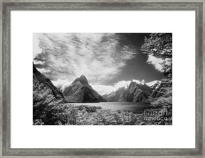 Milford Sound Fiordland I Framed Print by Colin and Linda McKie