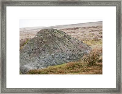 Millstone Grit Boulder Framed Print by Ashley Cooper