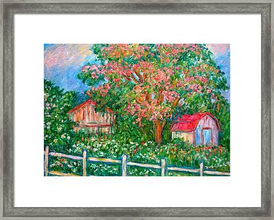 Mimosa View Framed Print by Kendall Kessler