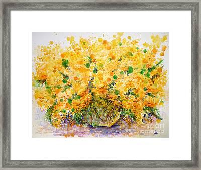 Mimosa Framed Print by Zaira Dzhaubaeva