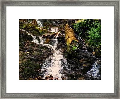 Mingo Falls 3 Framed Print by Chris Flees