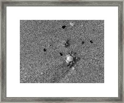 Mini Me Framed Print by Leana De Villiers