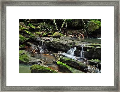 Mini Waterfalls Framed Print by Kaye Menner