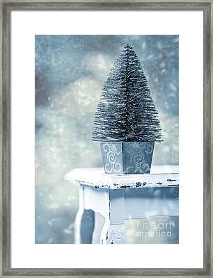Miniature Christmas Tree Framed Print by Amanda Elwell