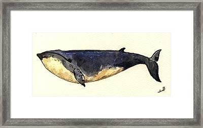 Minke Whale Framed Print by Juan  Bosco