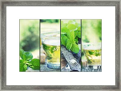 Mint Tea Collage Framed Print by Mythja  Photography