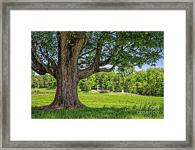 Minute Man National Historical Park  Framed Print by Edward Fielding