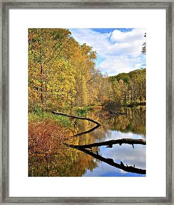 Mirror Mirror On The Floor Framed Print by Frozen in Time Fine Art Photography