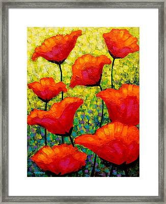 Mischa's Poppies Framed Print by John  Nolan