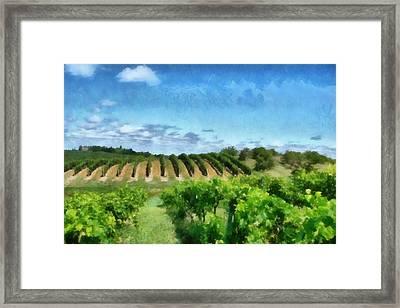 Mission Peninsula Vineyard Ll Framed Print by Michelle Calkins