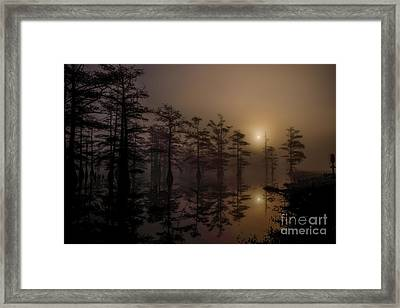 Mississippi Foggy Delta Swamp At Sunrise Framed Print by T Lowry Wilson