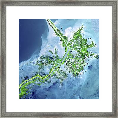 Mississippi River Delta Framed Print by Adam Romanowicz