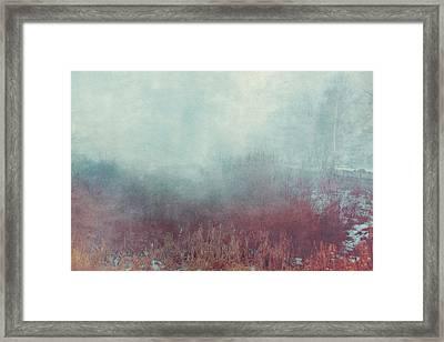 Mist 548 Framed Print by Violet Gray