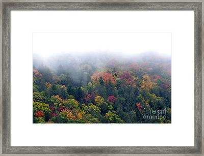 Mist And Fall Color Framed Print by Thomas R Fletcher