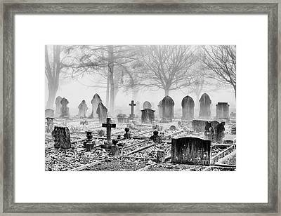 Mist And Shadow Framed Print by Tim Gainey
