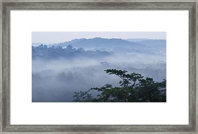 Mist Over Tropical Rainforest Kibale Np Framed Print by Sebastian Kennerknecht