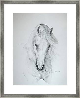 Misterioso 2 Framed Print by Janina  Suuronen