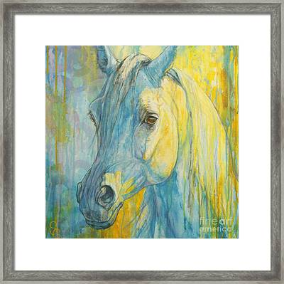 Misterious Blues Framed Print by Silvana Gabudean