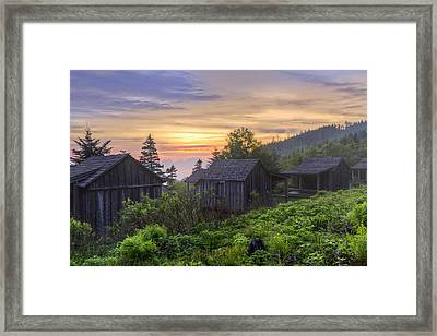 Misty Dawn At Mt Le Conte Framed Print by Debra and Dave Vanderlaan