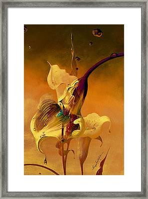 Misty Mellow Morning Framed Print by Hanne Lore Koehler