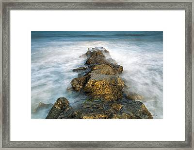 Misty Moment Framed Print by Bill Cantey