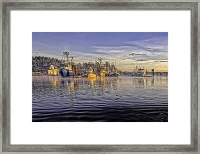 Misty Morning At The Docks Framed Print by Evan Spellman