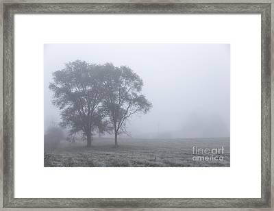 Misty Morning Framed Print by Evelina Kremsdorf