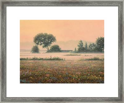 Misty Morning Framed Print by James W Johnson