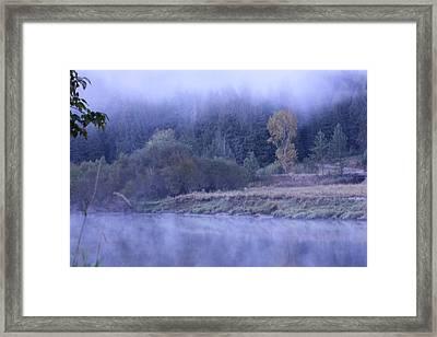 Misty Morning On The St Joe 2 Framed Print by Linda Meyer