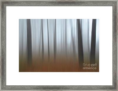 Misty Thoughts Framed Print by Simona Ghidini