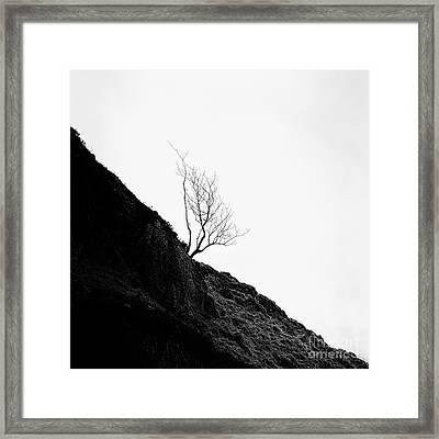 Misty Tree Glen Etive Framed Print by John Farnan
