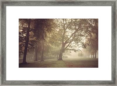 Misty Woodland Clearing Framed Print by Chris Fletcher